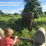 Top 8 Travel Musts for Families in Sri Lanka