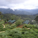 Family Hikes in Ella and Tea Plantations