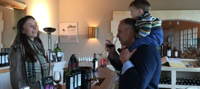 Bordeaux Winery with Kids at Chateau Gaby